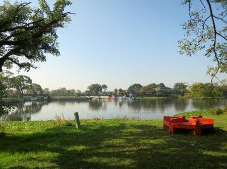 ▲この日は雲ひとつない秋晴れの、まさに江津湖日よりの掃除日よりでした