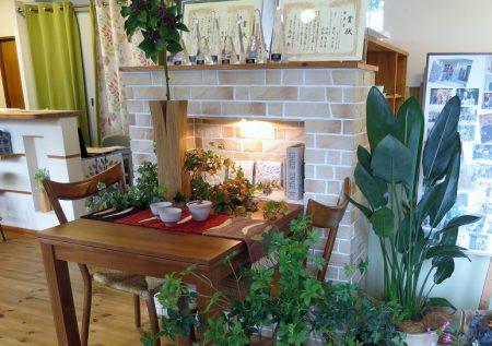 ▲入口のコーディネートは、暖炉を囲むほっこり温かい食卓のイメージで。なんだか温かいスープが飲みたくなります(笑)
