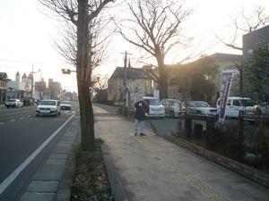 P1030678_R.JPGのサムネール画像